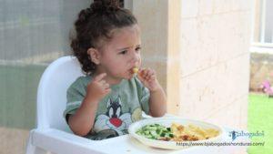Sobre las demandas de Alimentos en Honduras